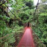 Reserva Monteverde: Parques Nacionales de Costa Rica