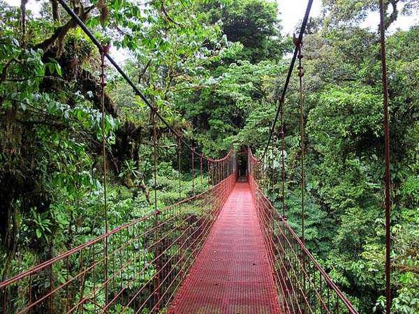 Reserva Monteverde en Costa Rica